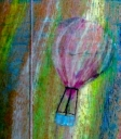 RaInBoW_BaLLooN_RiDe__2.jpg
